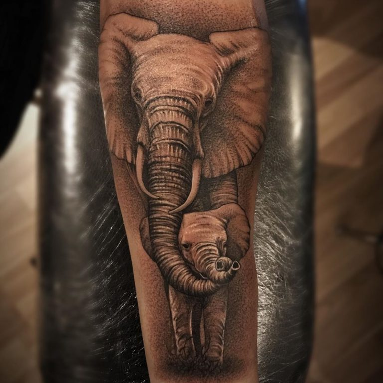 Animal Elephant Baby Elephant tattoo - Black and Grey style by Willy Grattan