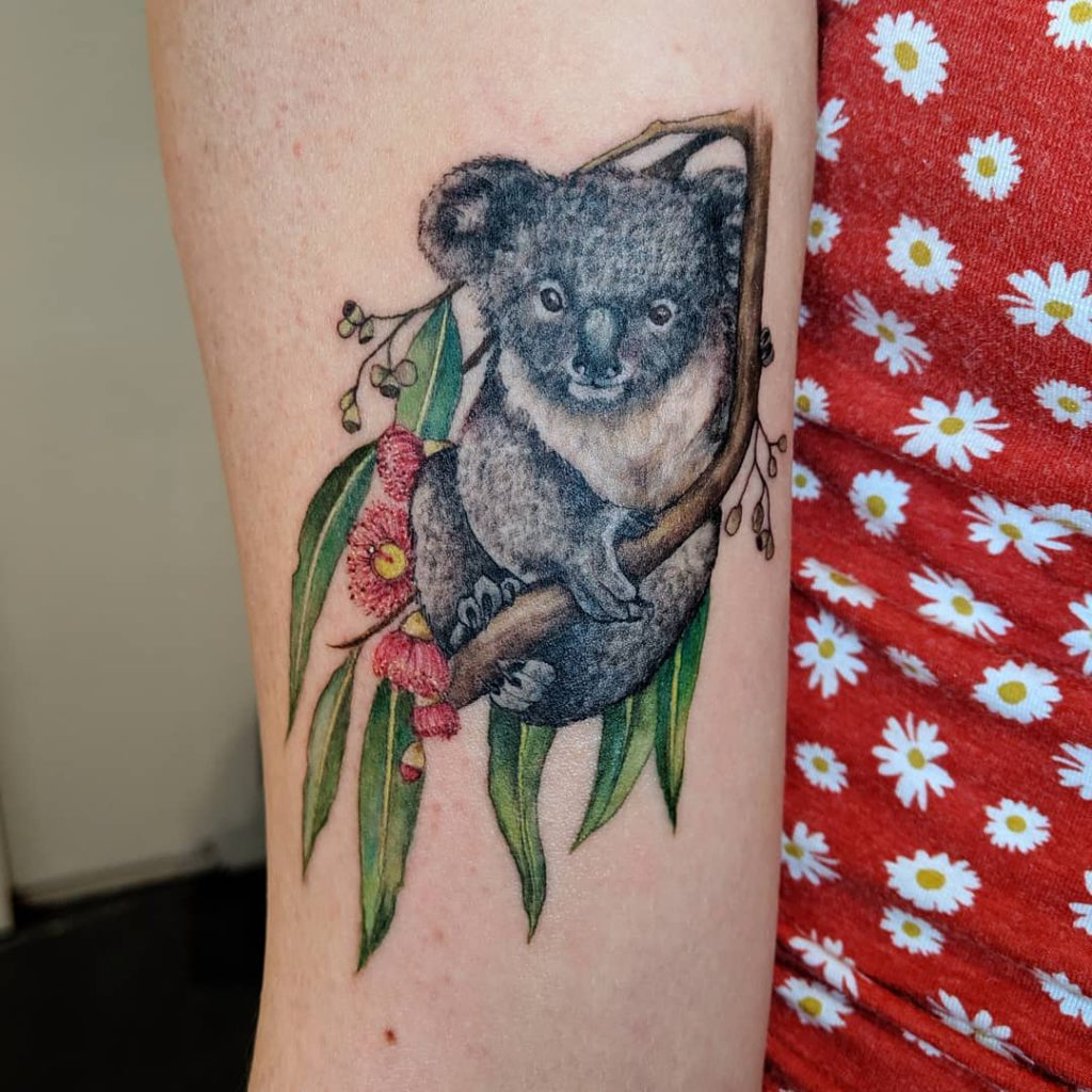 Animal Koala tattoo - Color style by Miss Megs